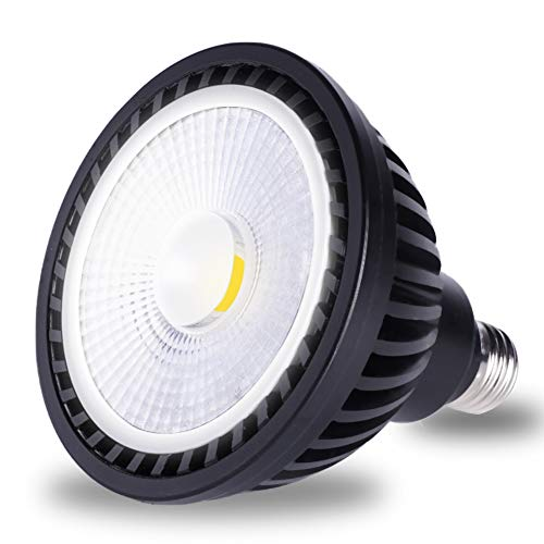 Wiyifada LED Pool Light Bulb 45W 120V 6000K Daylight White LED Swimming Pool Light Bulb E26 Base Replaces Up to 200-600W Traditionnal Bulb - Non Dimmable