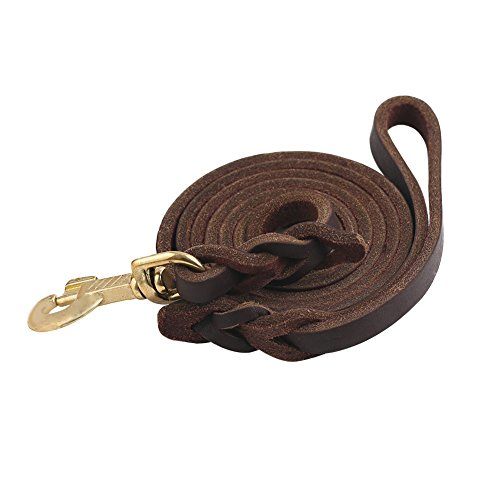 Guiding Star Brown 10ft Braided Leather Dog Training Leash