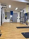 ARTIMEX espaldera de Acero (Escalera Sueca) para Gimnasia - utilizadas en hogares, gimnasios o Exteriores, 265x100 cm, código 231-Gladiator-90