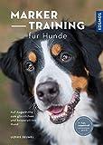 Marker-Training für Hunde: Auf Augenhöhe zum glücklichen und kooperativen Hund