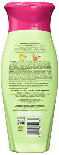Dabur Vatika Protein Rejuvenating Shampoo, Egg, 13.52 Fluid Ounce (Pack of 2)