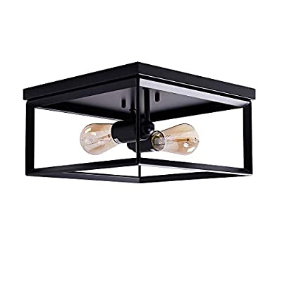 12 inch Industrial Flush Mount Ceiling Light Fixture,2-Light Caged Square Ceiling lamp,Modern Farmhouse Style for Hallway,Living Room,Bedroom, Kitchen, Porch,Laundry Room Black Finish