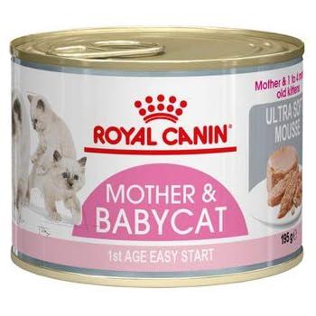 Royal Canin Mother Babycat Mousse 12x195g Amazon Co Uk Pet Supplies