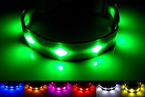 GoDoggie-GLOW - Improved Dog Visibility & Safety - USB Rechargeable LED Dog...