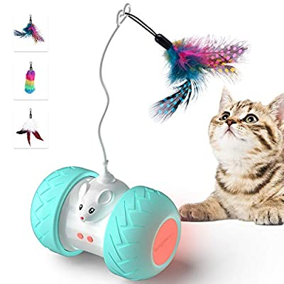BurgeonNest Automated Cat Toys for Indoor Cats, Cute Interactive Toy Balls with Mouse and 3 Feathers for Kitten 2 Speeds 3 Modes USB Charging from HIRALIY