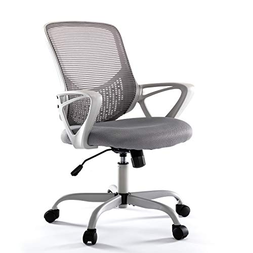 Rimiking Ergonomic Computer Desk Task Lumbar Support Mesh Office Chair with Wheels and Armrests, Gray