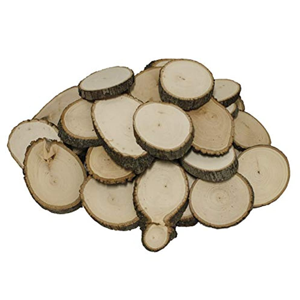 Walnut Hollow Bulk Value Pack Basswood Country Round, Extra Small for Wood Burning, Home Décor and Rustic Weddings, Extra Small, Extra Small
