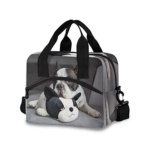 BOLOL Funny French Bulldog Reusable Insulated Lunch Bag Lunch Tote Bag for Women Men,Animal Puppy Panda Cooler Bag Lunch Box Container with Adjustable Shoulder Strap for Picnic School Work Office