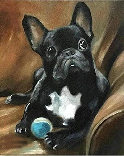 Kit per Diamond Painting 5D,Bulldog Francese Nero Principianti Adulti Pittura Punto Croce Ricamo Strass Immagine Artigianato Decorazione della Parete di Casa Regalo