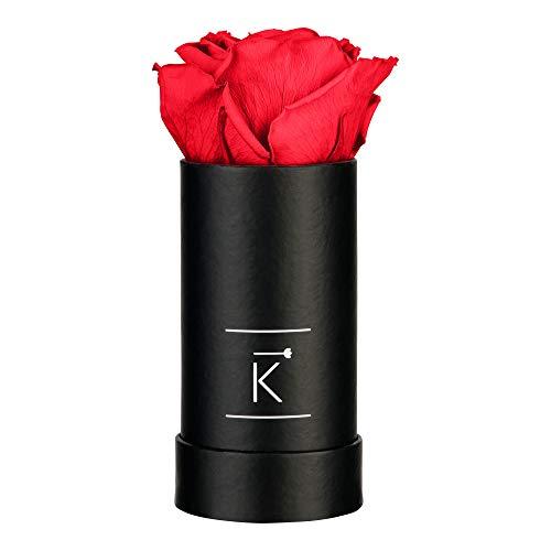 TRIPLE K - Rosenbox mit Infinity Rosen, bis 3 Jahre Haltbar, Inklusive Grußkarte und Rose-Raumduft (Mini, Red)