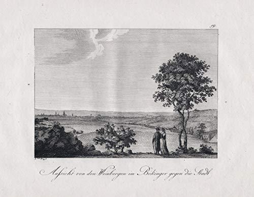 Aussicht von den Weinbergen im Bökinger gegen die Stadt - Heilbronn am Neckar Böckingen Weinberg Wein Ansicht view