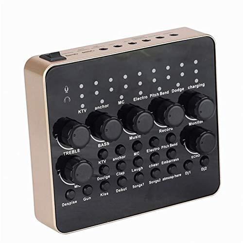 QLPP Tarjeta de Sonido Externa Estudio Profesional Tarjeta de Sonido USB Externa con Puerto de Auriculares con micrófono para Escenario en Vivo Grabación Hosting Discurso
