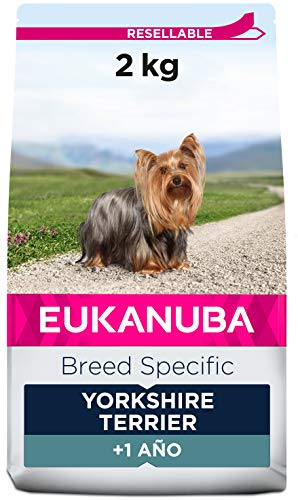 EUKANUBA Breed Specific Alimento seco para perros yorkshire terrier adultos, alimento para perros óptimamente adaptado a la raza 2 kg