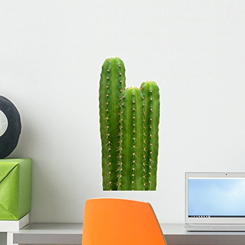 Wallmonkeys Group of San Pedro Cacti (echinopsis Pachanoi) Wall Decal Peel and Stick Graphic WM67377 (18 in H x 12 in W)