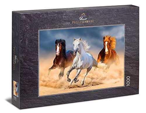 Ulmer Puzzleschmiede - Puzzle Reinas del Desierto: Puzzle de 1000 Piezas - Poderosos Caballos árabes Corriendo en el Desierto