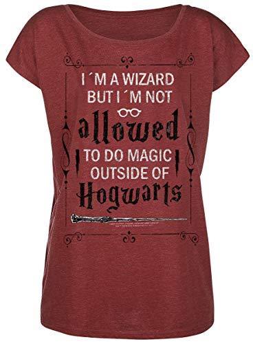 Harry Potter Allowed T-Shirt rot meliert XL