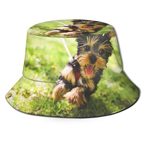 LEIJGS Garden Running Puppy Bucket Sun Hat for Men & Women -Uv Protection Camping Summer Hatflexible Durable for Teenager