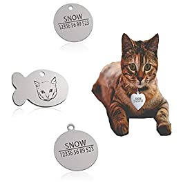 BLG c1 black M Free Engraving Cat id Tags Stainless Steel Personalized Dog Cat Collar Accessories Pet Necklace ID Name Tags Cat Collar id Tag