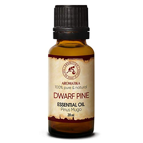 Latschenkiefer Öl 20ml - Pinus Mugo - Latschenkieferöl - Ätherische Öle für Schönheit - Sauna - Kosmetik - Aromatherapie - Diffusoren - Haut & Haare - Duftlampe - Raumduft - Körperpflege - Weihnachten