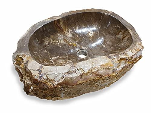 Lavabo de madera fosilizada – 30 – 50 cm, piedra natural – Madera fósiles, diferentes colores y vetas (modelo 10)