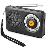 Radio Portatile a Transistor PRUNUS J-115 FM/AM(MW) DSP,Radio da Collezionismo,Progettato per i Non Vedenti, Manopola Anti-scivolo di 270°