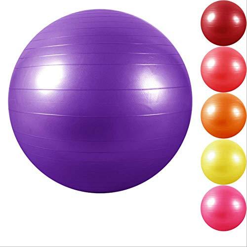 Bola de yoga engrosada a prueba de explosiones bola de fitness bola de dragón grande bola de masaje del sistema sensorial para niños rojo + bomba + piezas de repuesto 85 masaje del sistema sensorial