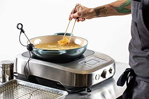 Breville PolyScience the Control Freak Temperature Controlled Commercial Induction Cooking System