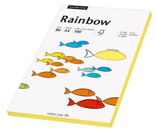 Papyrus 88042345 Druckerpapier Rainbow 80 g/m², A4 100 Blatt gelb