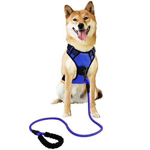 Raining Pet Hundegeschirr Hunde Geschirr für Große Hunde Anti Zug Geschirr No Pull Sicherheitsgeschirr Kleine Mittlere Hunde Brustgeschirr Blau M