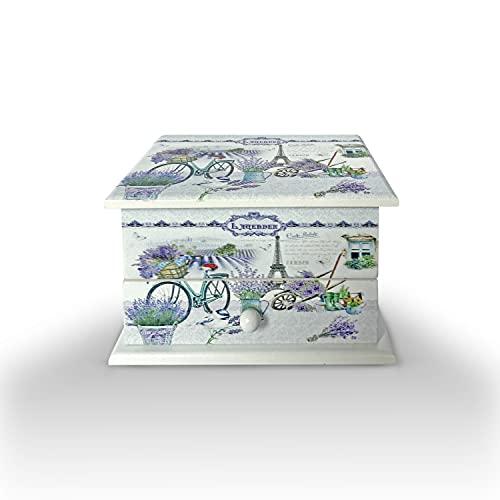 Joyero Musical, cajón musical para Joyas, Cofre de almacenamiento de Collares, anillo, y pendientes, organizador de diseños juveniles, ideal para regalo con espejo pequeño (BICICLETA MUSICAL ALE)