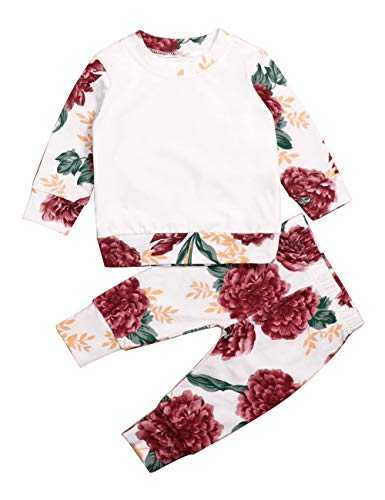 Yoveme Toddler Baby Girls Summer Clothes Floral Hoodie Print Sweatshirt Tops Flower Pants Outfit Set Twins Clothes (White, 2-3 T)