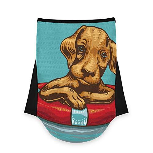 AJINGA Gesichtsbedeckungen, Bandana, Ohrschlaufen, stilvoll, Hund mit Rettungsring, für Damen, für Staub, Wind, Motorrad, Herren