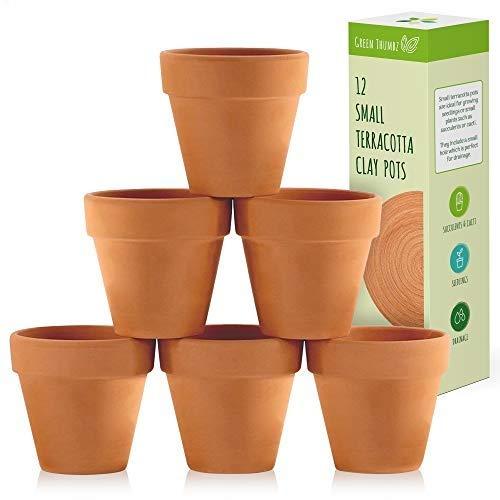 Green Thumbz Vasi Argilla, Vasi in Terracotta per piantare Fiori, Erbe aromatiche e Semi, vasi di Terracotta per Interni ed Esterni (12 Pack)