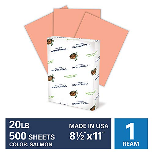 Hammermill Salmon Colored 20lb Copy Paper, 8.5x11, 1 Ream, 500 Total Sheets, Made in USA, Sustainably Sourced From American Family Tree Farms, Acid Free, Pastel Printer Paper, 103119R