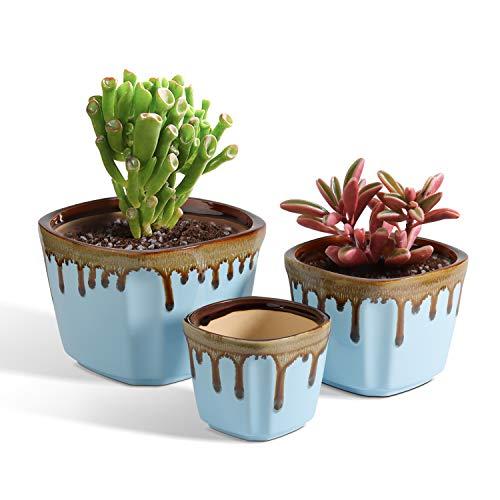 T4U Klein Sukkulenten Töpf 3er-Set, Keramik Blumentopf Innen Pflanzentopf mit Entwässerungsloch Blau für Kaktus, Kräuter, Miniaturpflanzen (Pflanze Nicht Enthalten)
