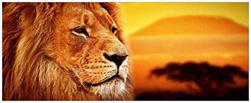 Wallario Glasbild Prächtiger Löwe in der Savanne - 50 x 125 cm in Premium-Qualität: Brillante Farben, freischwebende Optik