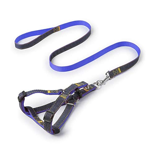 HAOHE Correa para collar de perro y gato, correa de sujeción para perro y coche, cinturón de seguridad general de nailon para perro, chaleco de seguridad de nailon (color: 02, tamaño: 2 cm, 7,5 20 kg)