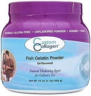 Fish Gelatin Powder - Plain Gelatin Unflavored 1lb (16oz) Jar - Kosher - Culinary Gelatin - Gelatin for Jello Shots - Gelatin for Gummy Bears - Marine Gelatin Powder