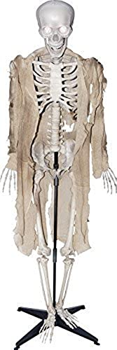 Talking Skeleton Halloween Prop Animated Skull Sounds Haunted House Decoration by Seasonal Visions