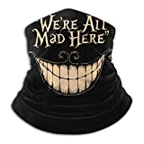 We're all Mad Here Face Cover Dust Wind Protection Mask Balaclava
