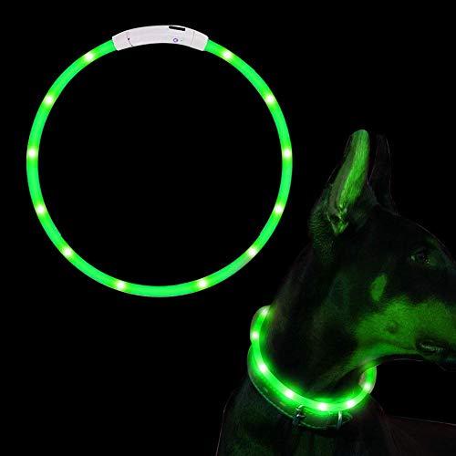 SaponinTree Collier Chien LED, Collier Chien LED USB Rechargeable Longueur Réglable Animal de Compagnie Sécurité Collier Lumineux étanche Collier Lumière Brillant pour Chien et Chat (Vert)