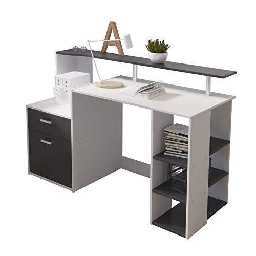 Hadwin Computer Desk for Home,Wood Office Desk with Drawers/Shelves Storage,Home Office Study Table...