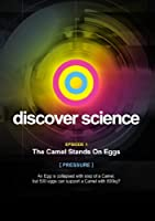 Discover Science: Camel Stands on Eggs [DVD] [Import]