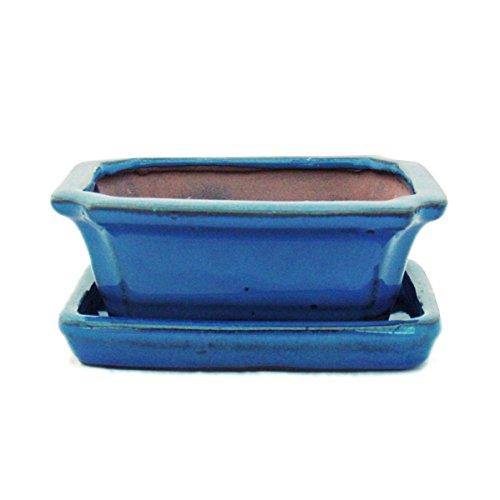 exotenherz - Bonsai-Schale mit Unterteller Gr. 1 - Blau - eckig - Modell G13 - L 12cm - B 9,5cm - H 4,5 cm