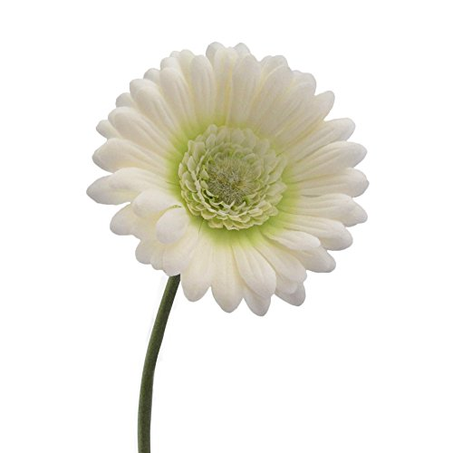 Kunstblumen Gerbera 50cm. Weiß Creme -48