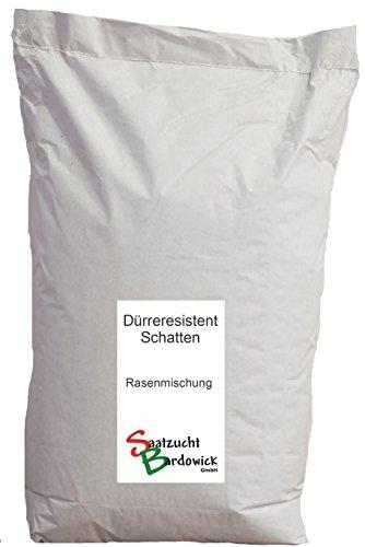 10kg für ca. 300 m² Schattenrasen dürreresistent Rasensamen Qualität Rasen Rasensaat Rasenmischung