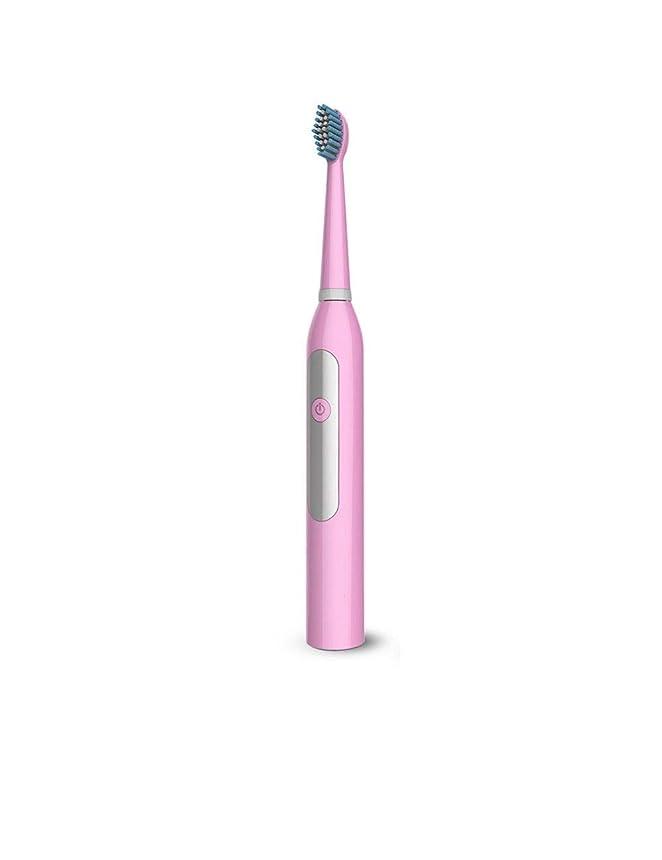 スクランブルシマウマ丁寧大人と子供のための電動歯ブラシ、インテリジェントタイミングリマインダー、音波振動バッテリー電動歯ブラシ3ファイル調整、ユニークなクリーニングデザイン (Color : Pink)