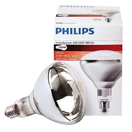 Philips IR250CH BR125 230-250V E2 Landwirtschaft. Lebensmit