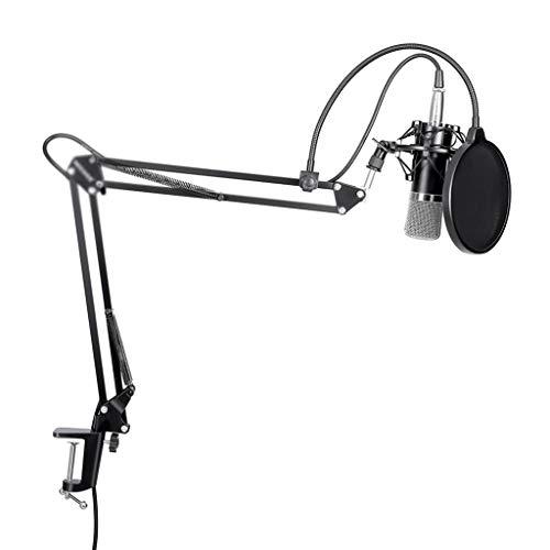 YWSZJ Cable de Soporte de Brazo de Tijera y micrófono de Condensador + Abrazadera de Montaje y Filtro Pop y Fuente de alimentación Fantasma de 48 V