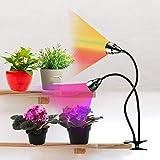 LED Grow Light for Indoor Plants,Full Spectrum Dual Head Desk Clip Plant Light for Seedlings/Seeds/Succulents,Adjustable Gooseneck & Timer Setting 3H/9H/12H,3 Color Modes